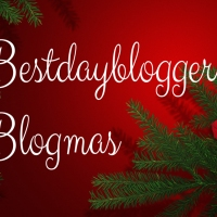 Holiday Gift Guide #Blogmas Day 9