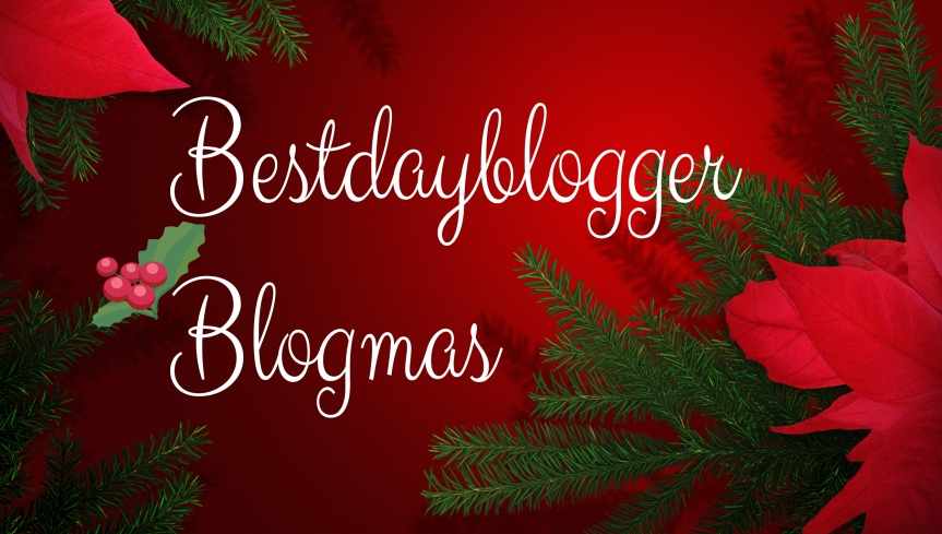Holiday Gift Guide #blogmas Day7