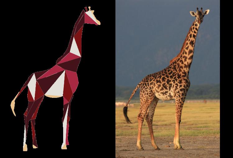 giraffeb-1Untitled-1.png