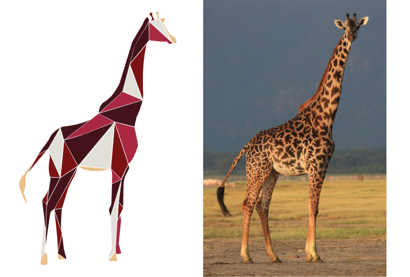 giraffeb-1Untitled-1.png